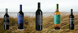 Photo for: Top 10 Argentine Wines for 2019