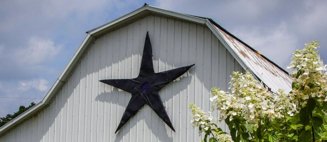 Photo for: StarView Vineyards - Supreme Wines From Shawnee Hills, Illinois