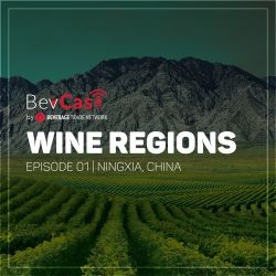 Photo for: Ningxia, China - Wine Regions Episode #01